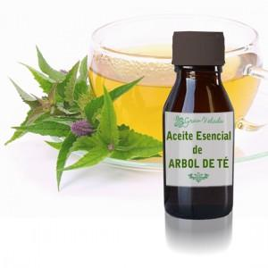 Aceite esencial del arbol del t&eacute;